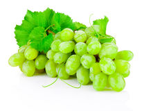 Fresh bunch of green grapes with leaves isolated on white Stock Photography