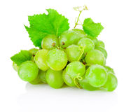 Fresh bunch of green grapes with leaves  on white Royalty Free Stock Image