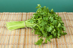 Fresh bunch of green parsley Stock Image