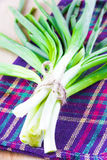 Fresh bunch of green spring onions. On purple towel Stock Photography