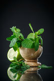 Fresh bunch of mint and lime Royalty Free Stock Photos