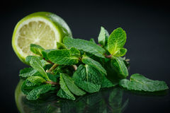 Fresh bunch of mint and lime Royalty Free Stock Image