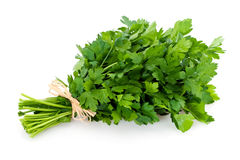 Fresh bunch of parsley Stock Photography