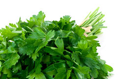Fresh bunch of parsley Royalty Free Stock Photos