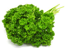 Fresh bunch of parsley Stock Images