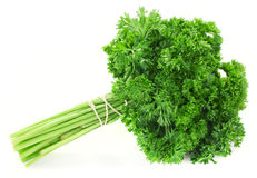 Fresh bunch of parsley Royalty Free Stock Photography