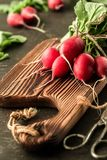Fresh bunch of radish on a cutting board. Healthy and vegan food. Organic fresh harvested vegetables Royalty Free Stock Photography