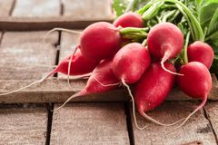Fresh bunch of radish on rustic  table. Bright clean red radish on a grey rough grunge wooden table. Healthy and vegan food. Organic fresh harvested vegetables Stock Images