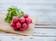 Bunch of radish on  wooden table. Fresh bunch of radish on wooden table Royalty Free Stock Image