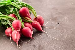 Fresh bunch of radish on wooden table. Bright clean red radish on a grey rough grunge wooden table. Healthy and vegan food. Organic fresh harvested vegetables Royalty Free Stock Photography