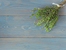 Fresh bundle of thyme. On wooden blue table Stock Images