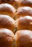 Fresh buns Stock Images
