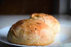 Fresh buns Royalty Free Stock Photo