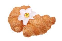 The fresh buns with flower on white Stock Photography