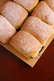 Fresh buns with icing sugar Stock Image