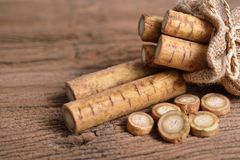 Fresh burdock root or Gobo in sack and on wooden background royalty free stock image