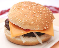 Fresh burger Royalty Free Stock Image