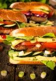 Fresh burger sandwiches Royalty Free Stock Photos