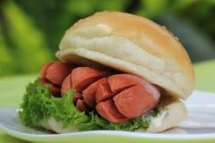 Fresh Burger with sausage Stock Photos