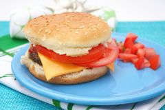 Fresh burger Royalty Free Stock Photo