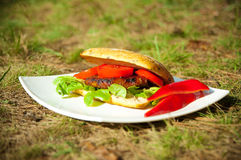 Fresh burger with vegetables on a white plate Royalty Free Stock Image