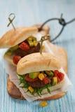 Fresh burgers Royalty Free Stock Photo