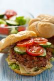 Fresh burgers. Two fresh burgers with tomato and cucumber stock photo