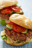 Fresh burgers. Two fresh burgers with tomato and cucumber royalty free stock photography