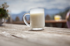 Fresh Buttermilk Stock Image