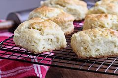 Fresh Buttermilk Southern Biscuits Cooling on Cooling Rack. Freshly baked buttermilk southern biscuits or scones from scratch cooling on a cooling rack royalty free stock images