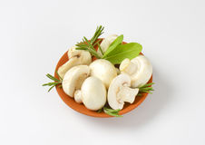 Fresh button mushrooms and culinary herbs Stock Image