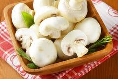 Fresh button mushrooms Stock Photo