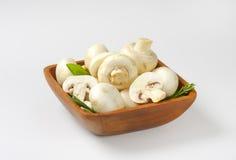 Fresh button mushrooms Royalty Free Stock Photos