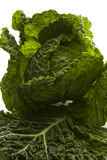 Fresh cabbage. Fresh green cabbage isolated on white background Stock Photo