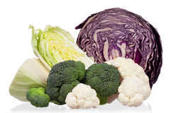 Fresh cabbage Stock Image