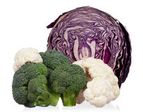 Fresh cabbage Stock Photos