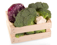 Fresh cabbage in box. Broccoli, cauliflower, of red Stock Images