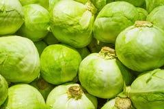 Fresh cabbage Stock Photo
