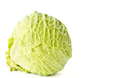 Fresh cabbage early Stock Photos