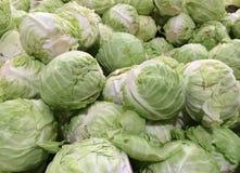 fresh cabbage Stock Image