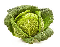 Fresh cabbage isolated on white Royalty Free Stock Images