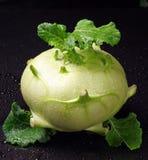 Fresh cabbage kohlrabi Royalty Free Stock Photos