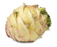 Fresh cabbage kohlrabi isolated on white background closeup Royalty Free Stock Photography