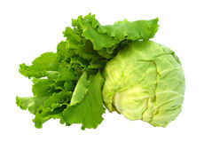 Fresh cabbage and lettuce isolated on white Stock Photos