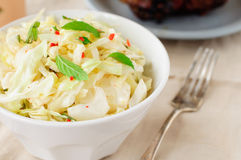 Fresh Cabbage, Mint and Chili Salad. Copy space for your text Stock Photography