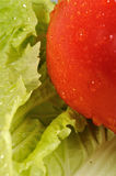 Fresh cabbage and red tomato. Fresh green, yellow  cabbage and red tomato Stock Images