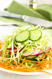 Fresh cabbage salad with cucumber,  carrot and radishes on a whi. Te plate.  Spring salad Stock Images
