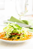 Fresh cabbage salad with cucumber,  carrot and radishes on a whi. Te plate.  Spring salad Royalty Free Stock Photography