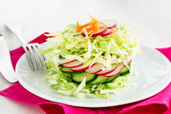 Fresh cabbage salad with cucumber and radishes on a white plate. Spring salad Royalty Free Stock Photography