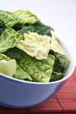 Fresh cabbage. Some green cabbage in a bowl royalty free stock photography